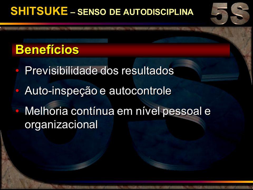 SHITSUKE – SENSO DE AUTODISCIPLINA Benefícios Previsibilidade dos resultados Auto-inspeção e autocontrole Melhoria contínua em nível pessoal e organiz