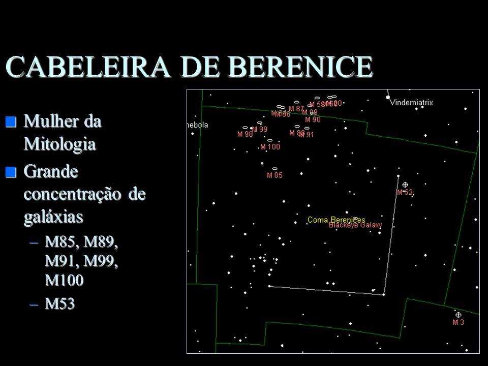 URSA MAIOR n Animal Mítico n Objetos importantes –M101, 108, 109 –Neb. da Coruja –Alcor e Mizar