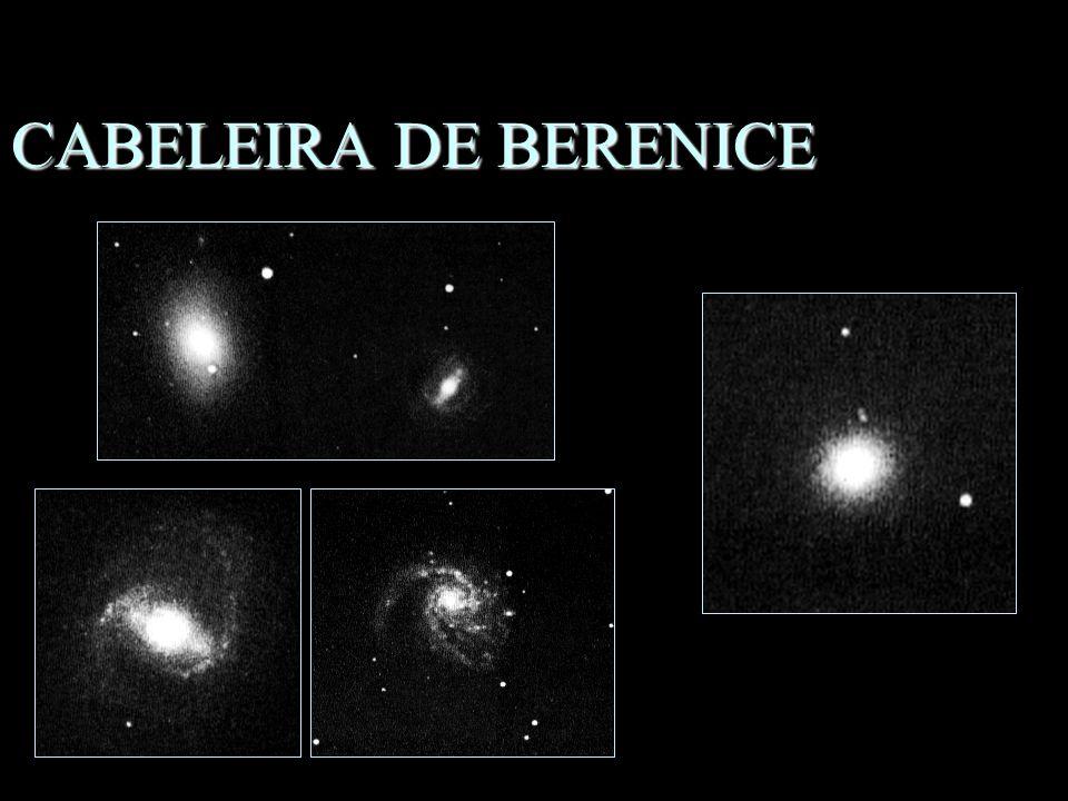 CABELEIRA DE BERENICE n Mulher da Mitologia n Grande concentração de galáxias –M85, M89, M91, M99, M100 –M53