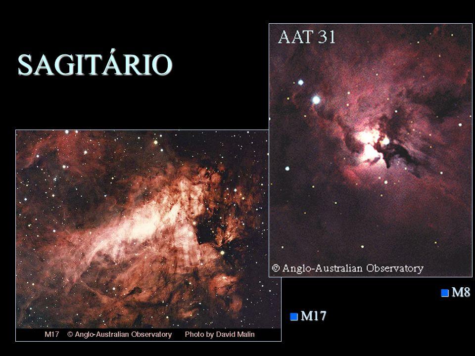 SAGITÁRIO n Animal Mitológico meio homem meio cavalo n Objetos importantes –M8, M17, M20 e M24