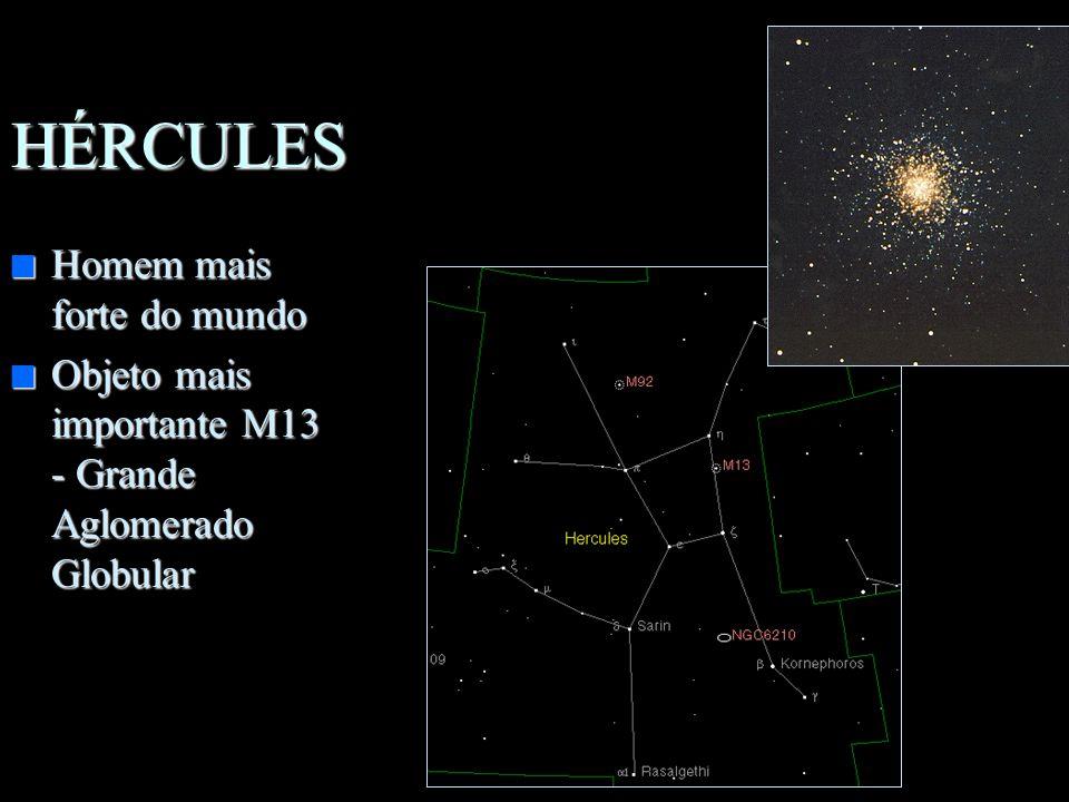 HÉRCULES n Homem mais forte do mundo n Objeto mais importante M13 - Grande Aglomerado Globular