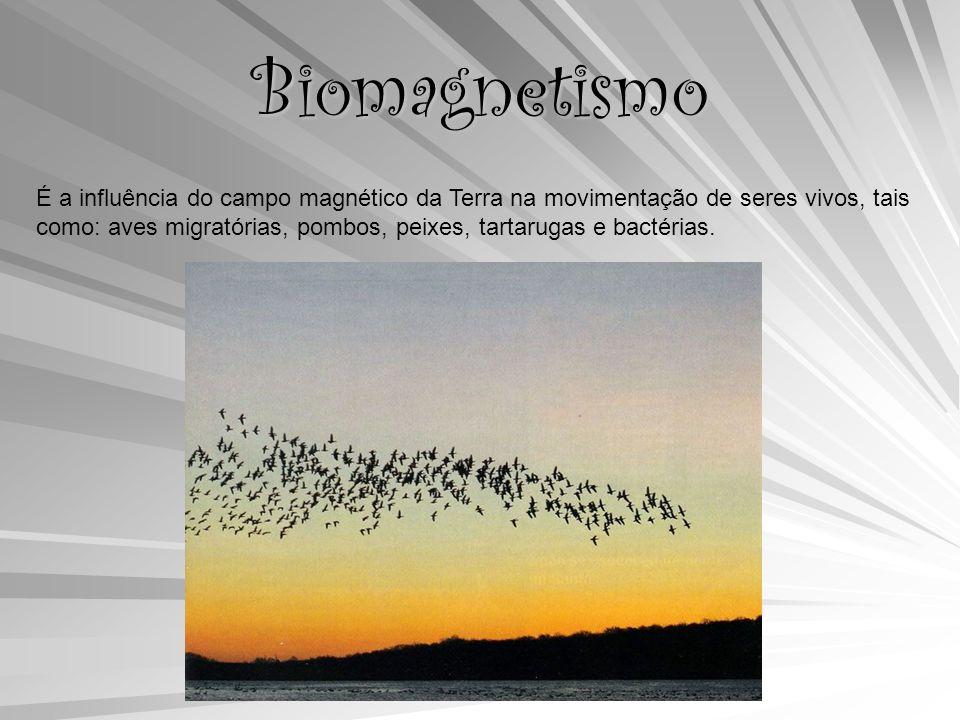 Biomagnetismo É a influência do campo magnético da Terra na movimentação de seres vivos, tais como: aves migratórias, pombos, peixes, tartarugas e bactérias.