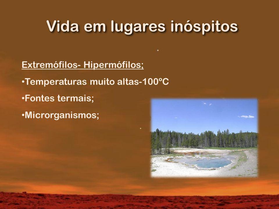 Vida em lugares inóspitos Extremófilos- Hipermófilos; Temperaturas muito altas-100ºC Fontes termais; Microrganismos;