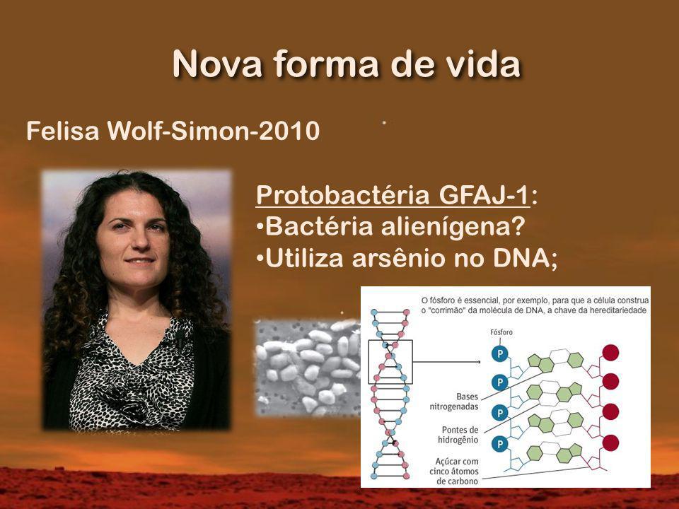 Nova forma de vida Felisa Wolf-Simon-2010 Protobactéria GFAJ-1: Bactéria alienígena.