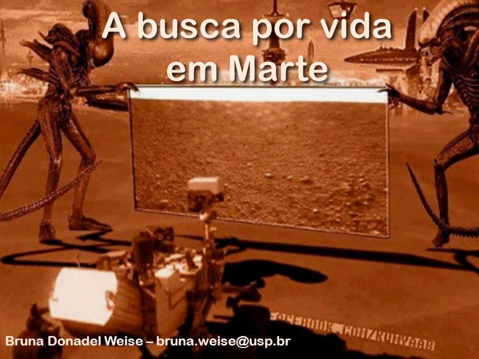 A busca por vida em Marte Bruna Donadel Weise – bruna.weise@usp.br