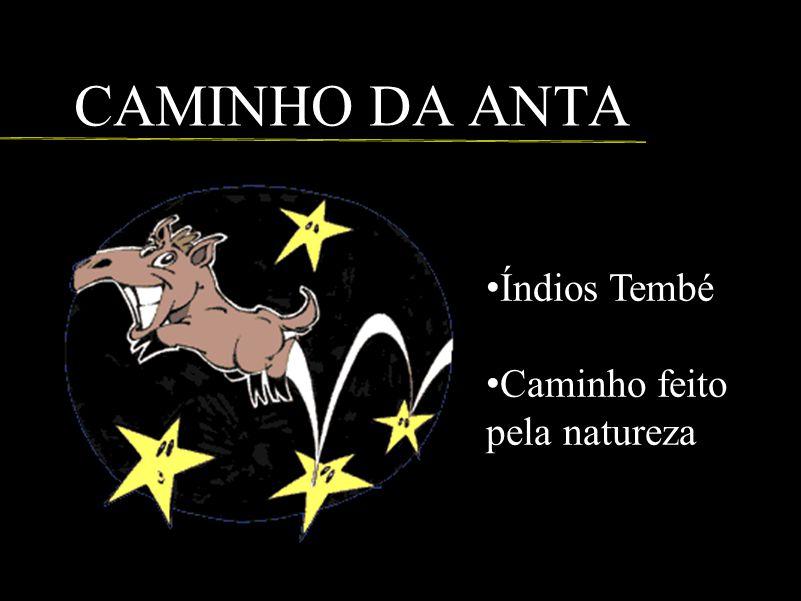 CAMINHO DA ANTA Índios Tembé Caminho feito pela natureza