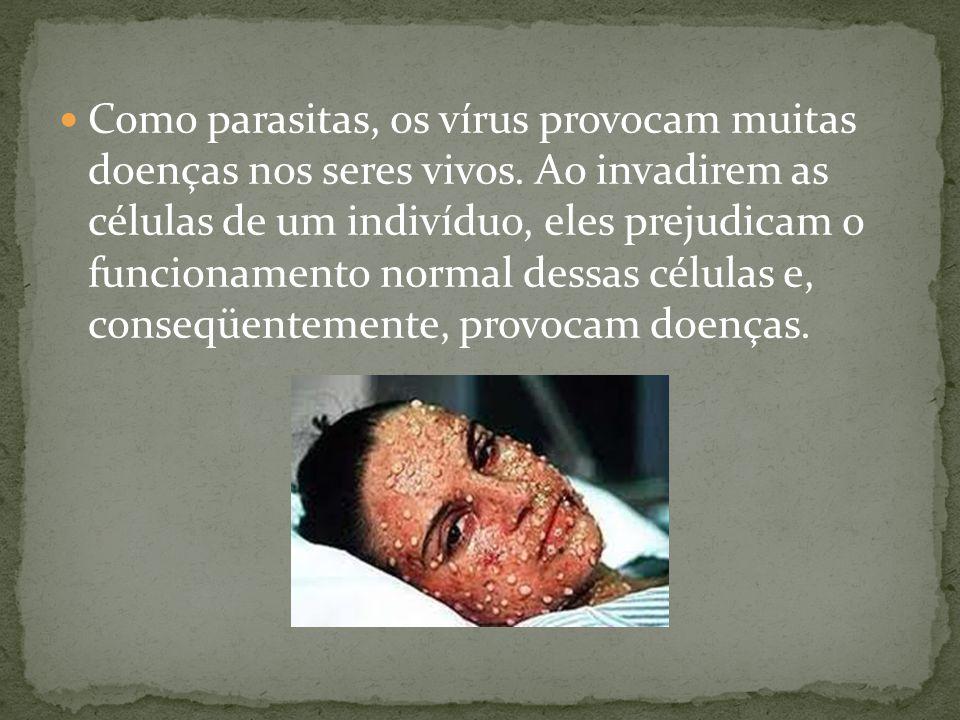 Como parasitas, os vírus provocam muitas doenças nos seres vivos. Ao invadirem as células de um indivíduo, eles prejudicam o funcionamento normal dess