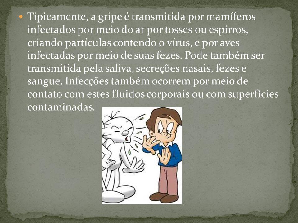 Tipicamente, a gripe é transmitida por mamíferos infectados por meio do ar por tosses ou espirros, criando partículas contendo o vírus, e por aves inf