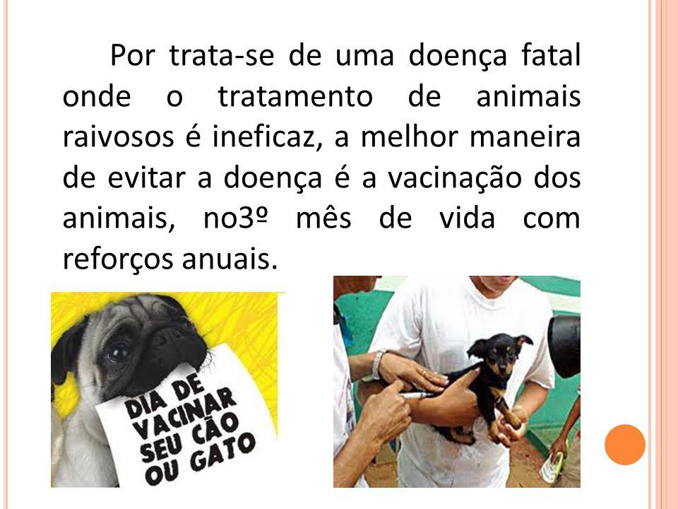 Por trata-se de uma doença fatal onde o tratamento de animais raivosos é ineficaz, a melhor maneira de evitar a doença é a vacinação dos animais, no3º