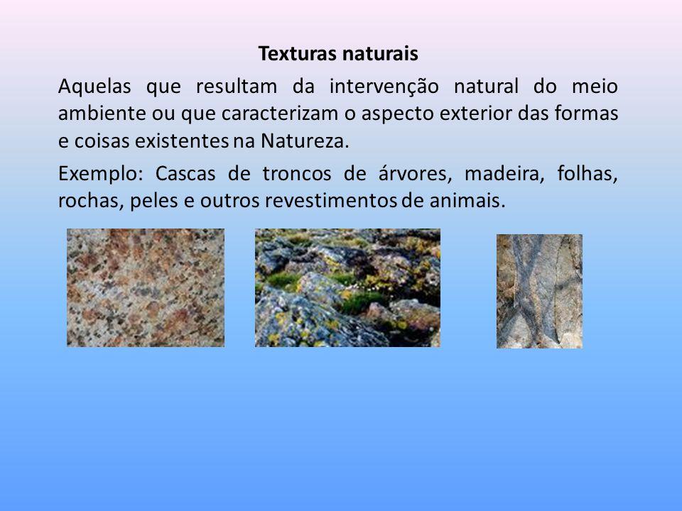 Texturas naturais Aquelas que resultam da intervenção natural do meio ambiente ou que caracterizam o aspecto exterior das formas e coisas existentes n