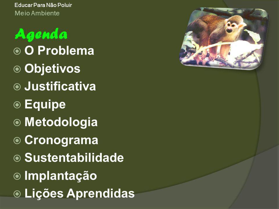 Meio Ambiente Educar Para Não Poluir O Problema Objetivos Justificativa Equipe Metodologia Cronograma Sustentabilidade Implantação Lições Aprendidas Agenda