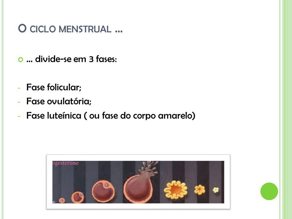 O CICLO MENSTRUAL … … divide-se em 3 fases: - Fase folicular; - Fase ovulatória; - Fase luteínica ( ou fase do corpo amarelo)