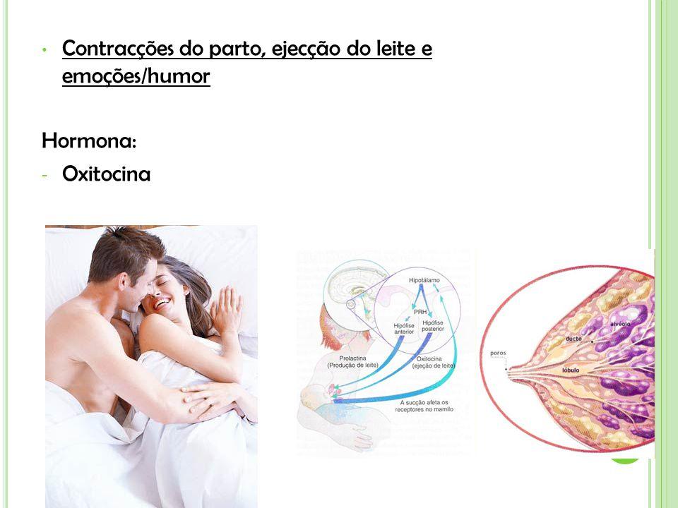 Contracções do parto, ejecção do leite e emoções/humor Hormona: - Oxitocina