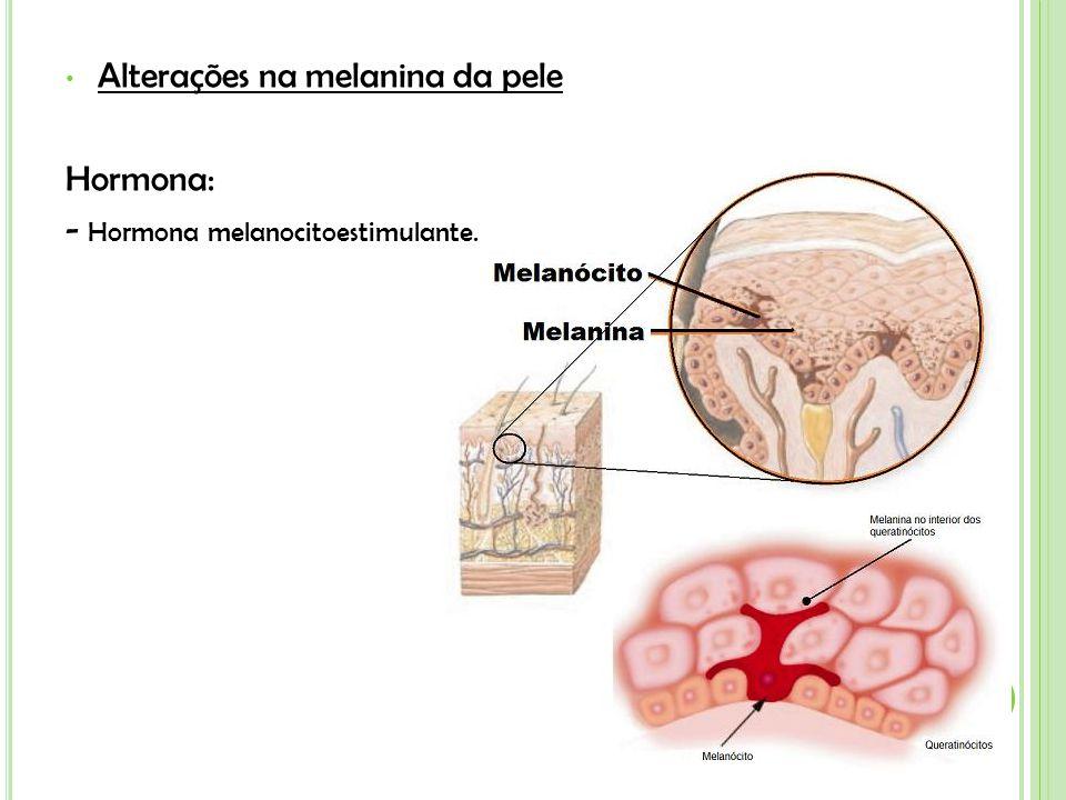 Alterações na melanina da pele Hormona: - Hormona melanocitoestimulante.