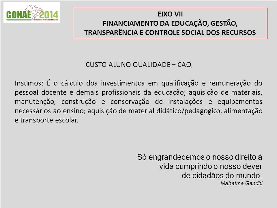 EIXO VII FINANCIAMENTO DA EDUCAÇÃO, GESTÃO, TRANSPARÊNCIA E CONTROLE SOCIAL DOS RECURSOS Obrigado.