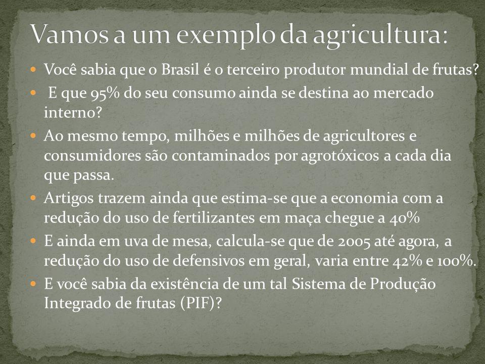 Você sabia que o Brasil é o terceiro produtor mundial de frutas.