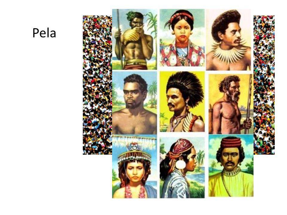 Destas comunidades agrícolas surgiram os primeiros exemplares da arte deste povo que traz a marca do seu modo de vida.