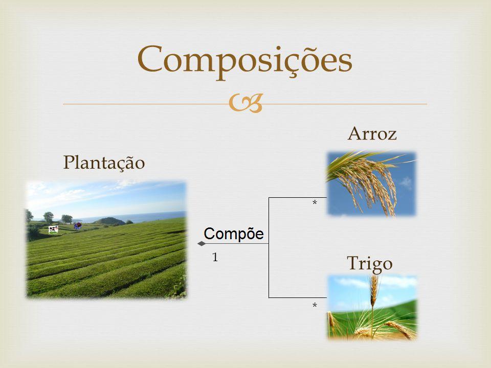 Composições * * 1 Arroz Trigo Plantação