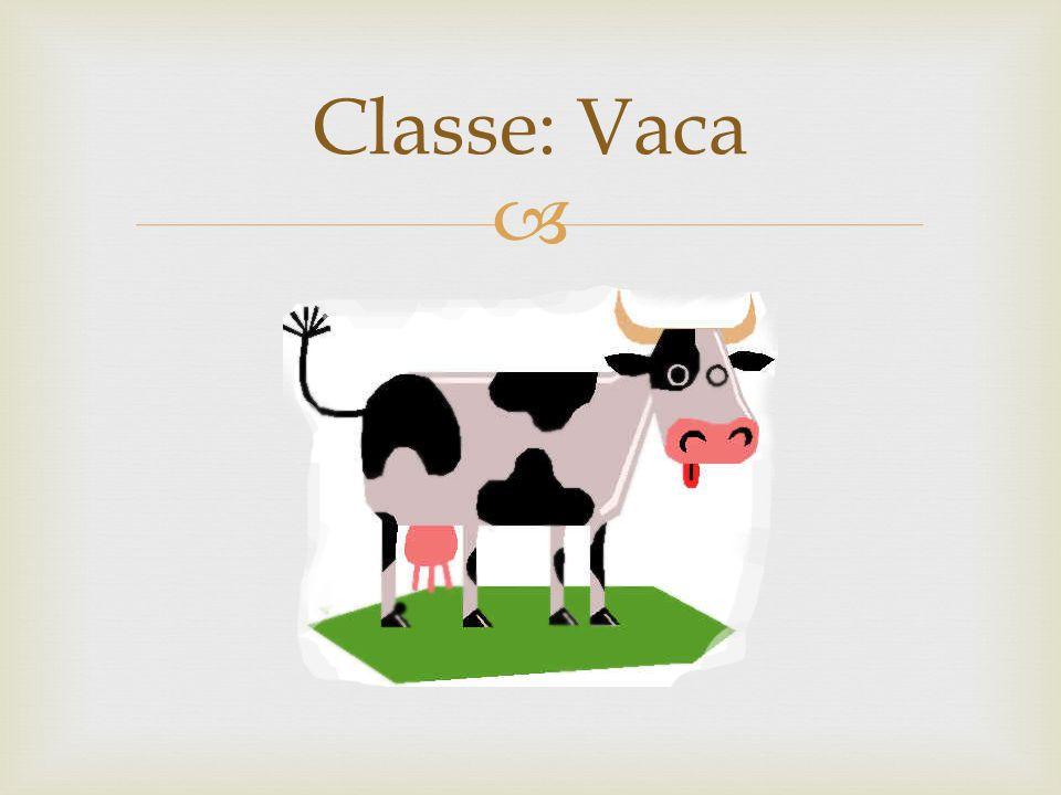 A classe vaca tem suas características (atributos), como: Pernas Um rabo Pelos
