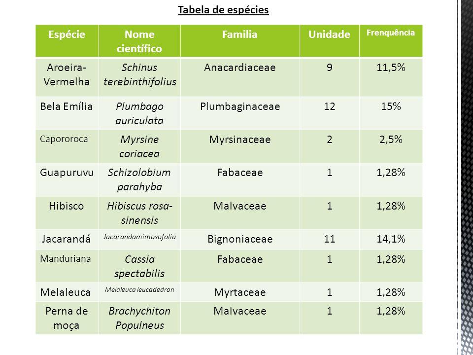 EspécieNome científico FamiliaUnidade Frenquência Aroeira- Vermelha Schinus terebinthifolius Anacardiaceae911,5% Bela EmíliaPlumbago auriculata Plumbaginaceae1215% Capororoca Myrsine coriacea Myrsinaceae22,5% GuapuruvuSchizolobium parahyba Fabaceae11,28% HibiscoHibiscus rosa- sinensis Malvaceae11,28% Jacarandá Jacarandamimosofolia Bignoniaceae1114,1% Manduriana Cassia spectabilis Fabaceae11,28% Melaleuca Melaleuca leucadedron Myrtaceae11,28% Perna de moça Brachychiton Populneus Malvaceae11,28% Tabela de espécies