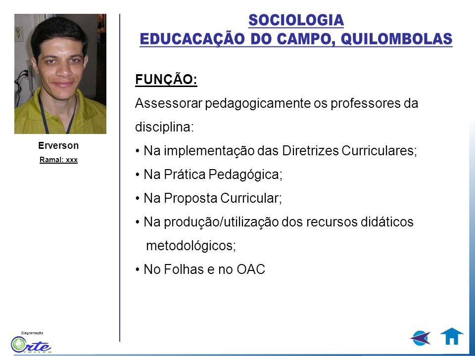 Diagramação FUNÇÃO: Assessorar pedagogicamente os professores da disciplina: Na implementação das Diretrizes Curriculares; Na Prática Pedagógica; Na P