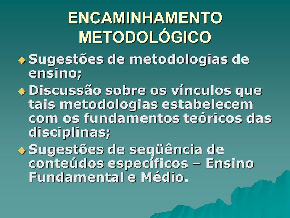 ENCAMINHAMENTO METODOLÓGICO Sugestões de metodologias de ensino; Sugestões de metodologias de ensino; Discussão sobre os vínculos que tais metodologia