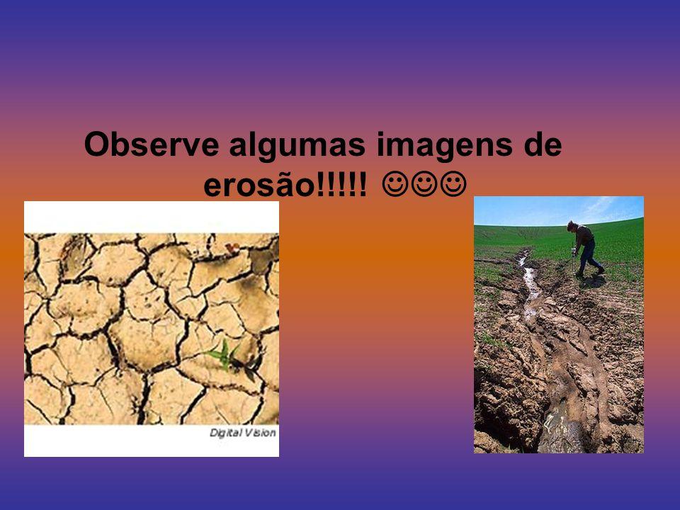 A erosão é uma rachadura que da na terra. Ela da pela água da chuva, pelo vento ou, ainda, pela ação do gelo.