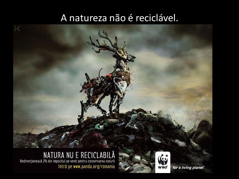 A natureza não é reciclável.