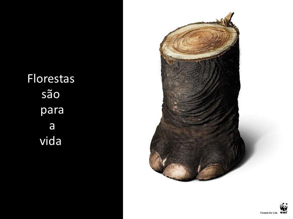 Florestas são para a vida