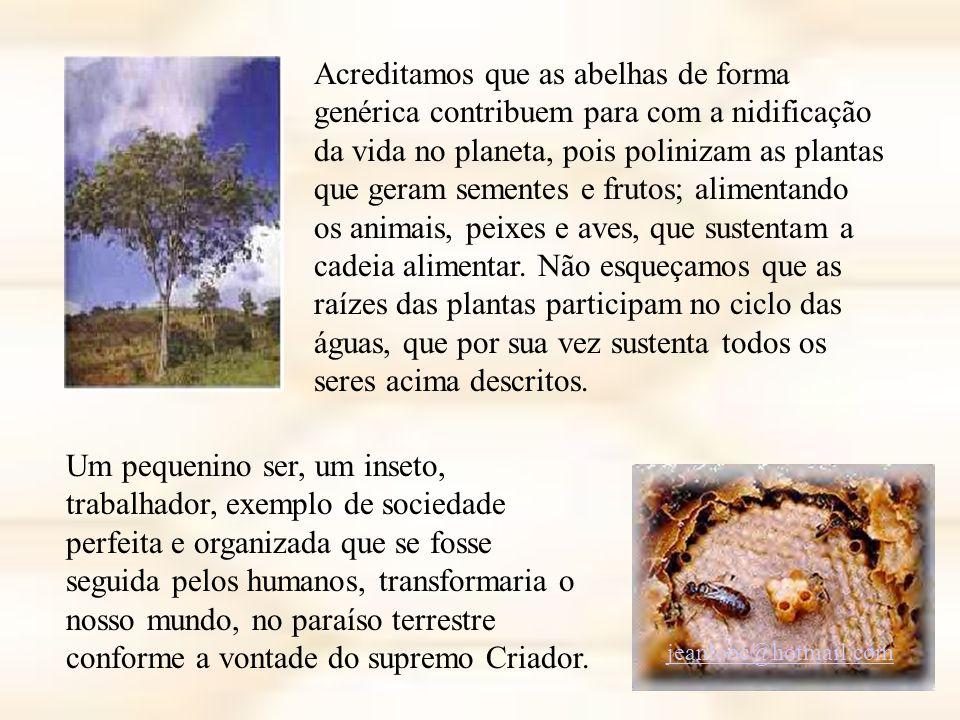 Acreditamos que as abelhas de forma genérica contribuem para com a nidificação da vida no planeta, pois polinizam as plantas que geram sementes e frutos; alimentando os animais, peixes e aves, que sustentam a cadeia alimentar.