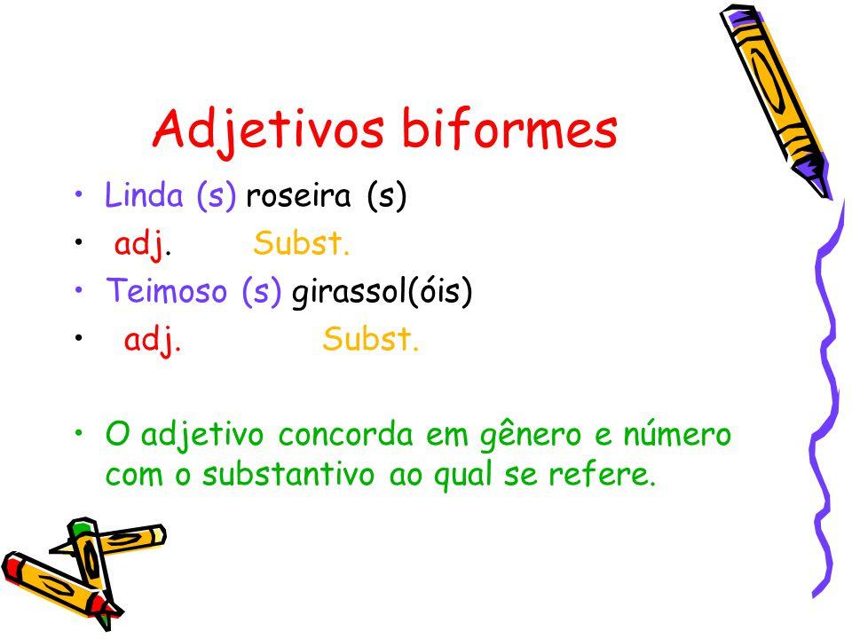 Adjetivos biformes Linda (s) roseira (s) adj.Subst.