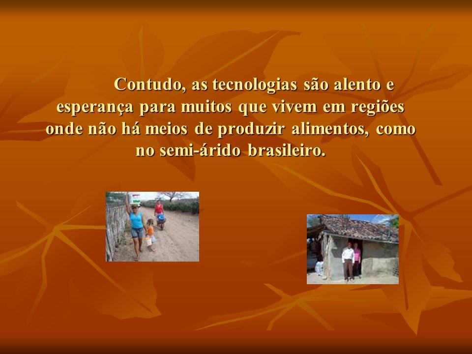Contudo, as tecnologias são alento e esperança para muitos que vivem em regiões onde não há meios de produzir alimentos, como no semi-árido brasileiro