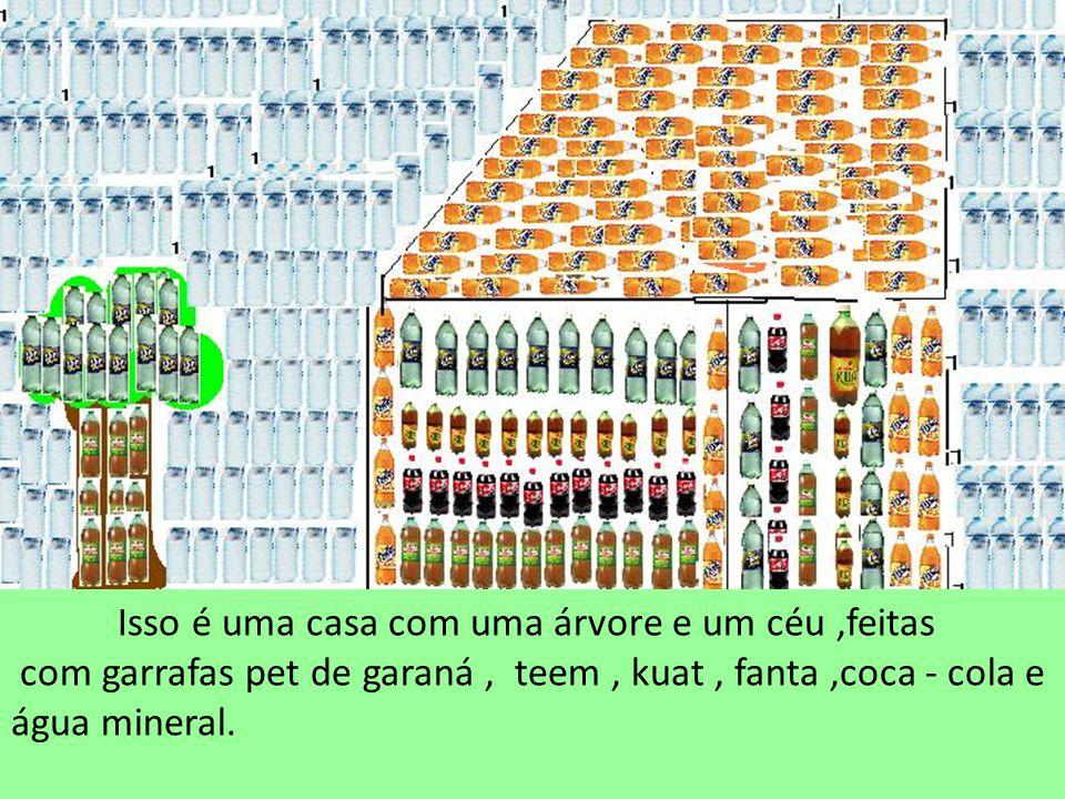 Isso é uma casa com uma árvore e um céu,feitas com garrafas pet de garaná, teem, kuat, fanta,coca - cola e água mineral.