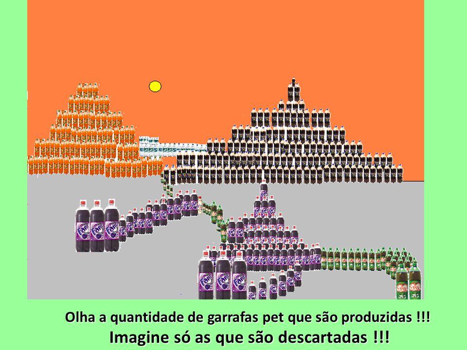 Olha a quantidade de garrafas pet que são produzidas !!! Imagine só as que são descartadas !!!