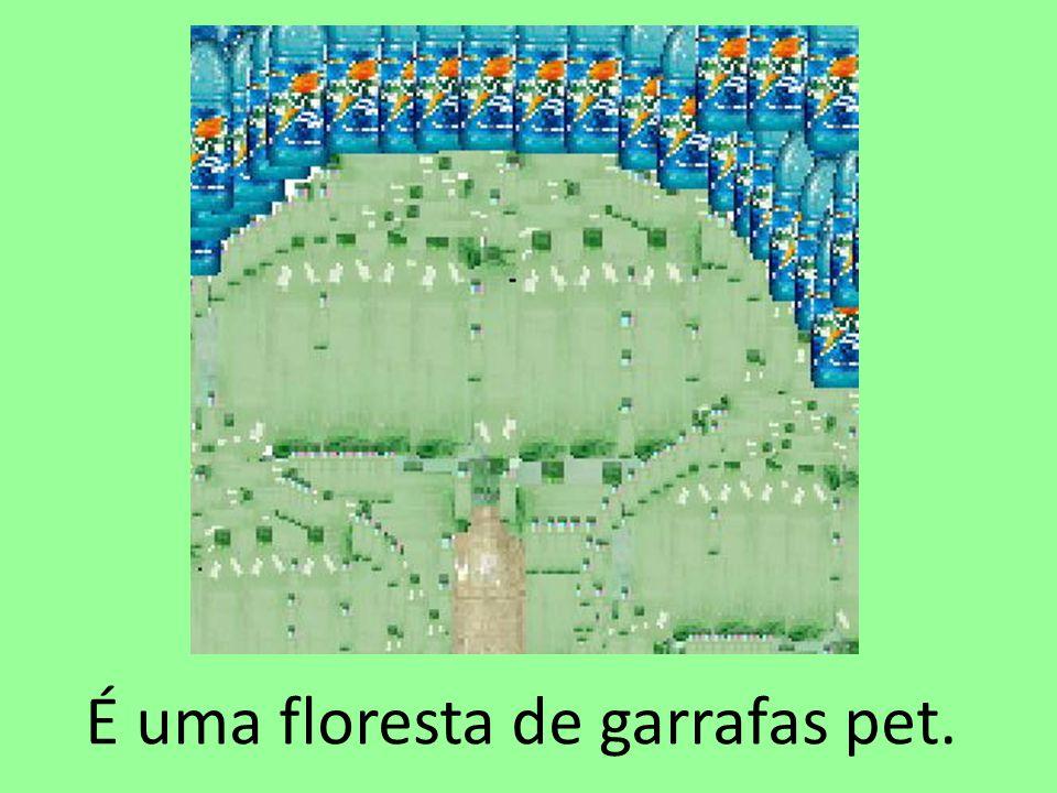 É uma floresta de garrafas pet.