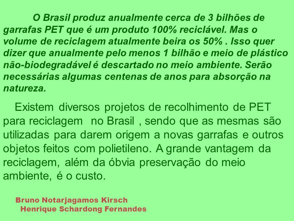 O Brasil produz anualmente cerca de 3 bilhões de garrafas PET que é um produto 100% reciclável. Mas o volume de reciclagem atualmente beira os 50%. Is