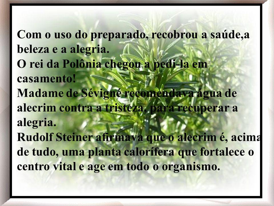 O alecrim - Rosmarinos officinalis, planta nativa da região mediterrânea - foi muito apreciado na Idade Média e no Renascimento, aparecendo em várias