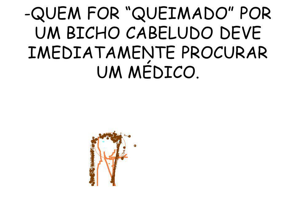 -QUEM FOR QUEIMADO POR UM BICHO CABELUDO DEVE IMEDIATAMENTE PROCURAR UM MÉDICO.