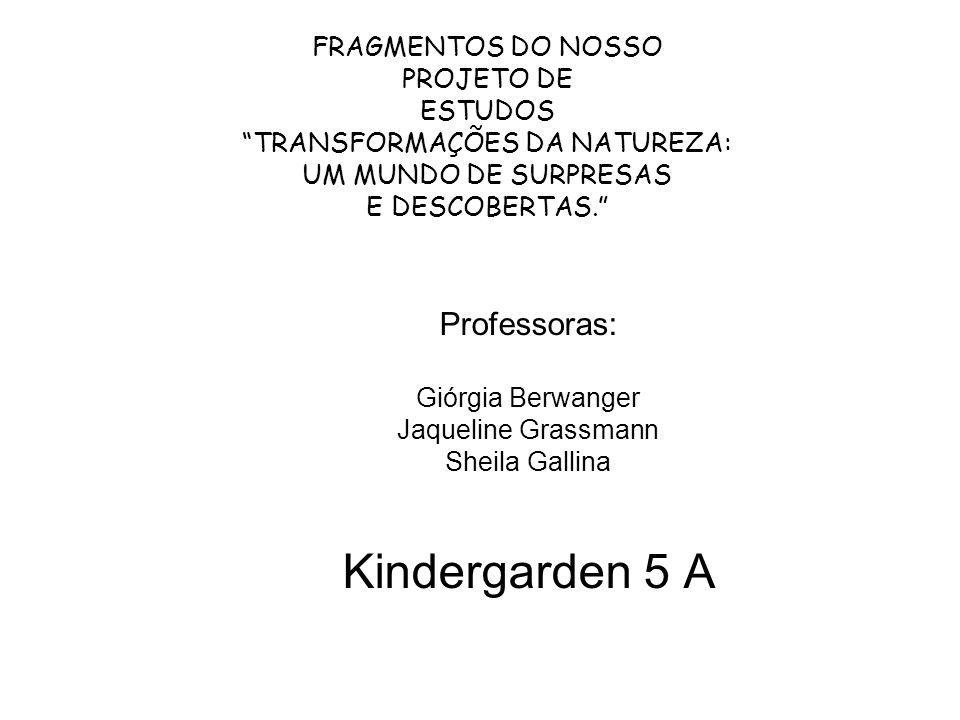 FRAGMENTOS DO NOSSO PROJETO DE ESTUDOS TRANSFORMAÇÕES DA NATUREZA: UM MUNDO DE SURPRESAS E DESCOBERTAS. Professoras: Giórgia Berwanger Jaqueline Grass