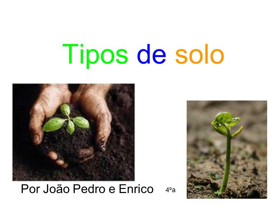 Tipos de solo Por João Pedro e Enrico 4ºa