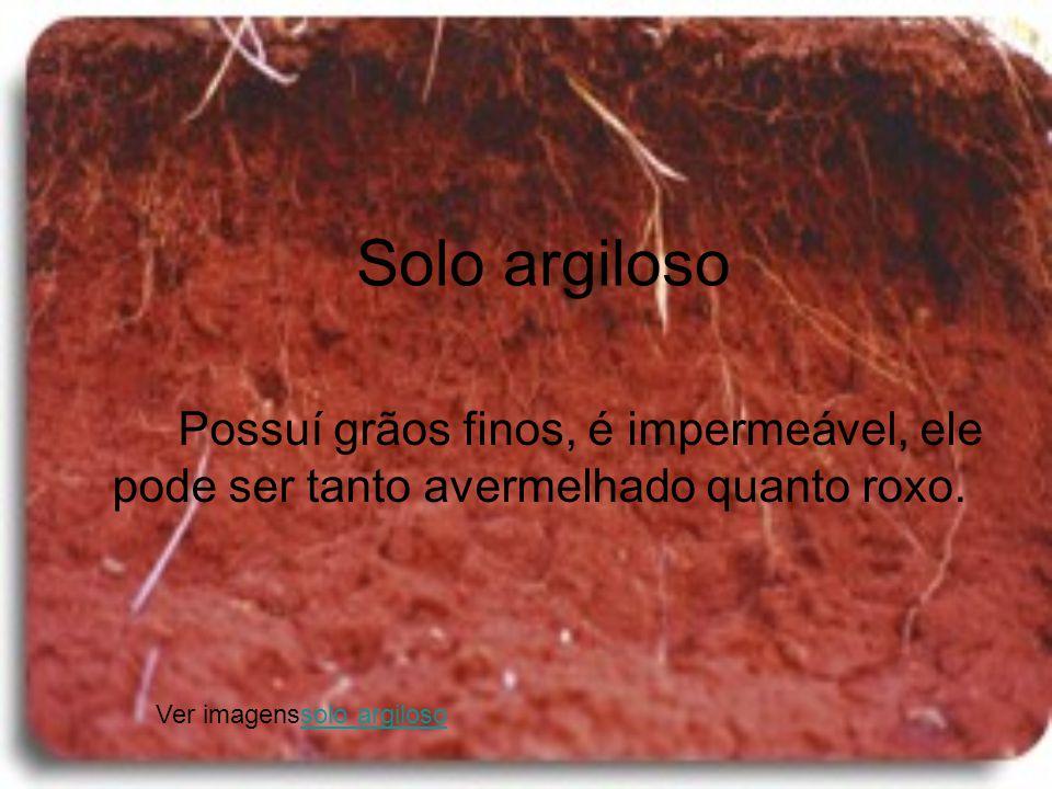 Solo argiloso Possuí grãos finos, é impermeável, ele pode ser tanto avermelhado quanto roxo. Ver imagenssolo argilososolo argiloso