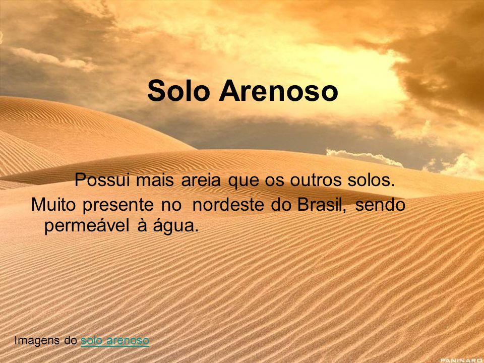 Solo Arenoso Possui mais areia que os outros solos. Muito presente no nordeste do Brasil, sendo permeável à água. Imagens do solo arenososolo arenoso