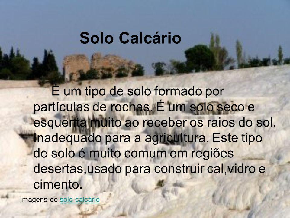 Solo Calcário É um tipo de solo formado por partículas de rochas. É um solo seco e esquenta muito ao receber os raios do sol. Inadequado para a agricu