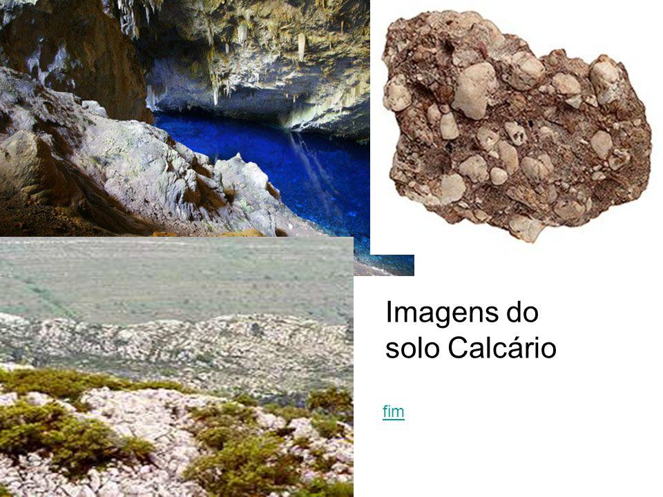 fim Imagens do solo Calcário