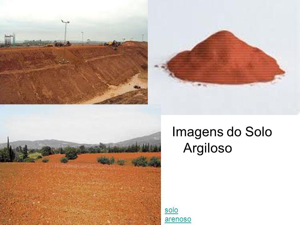 Imagens do Solo Argiloso solo arenoso