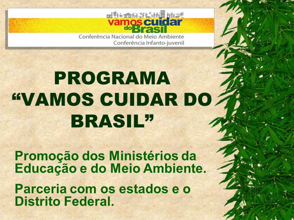Histórico do programa Vamos Cuidar do Brasil e das Conferências Nacionais Infanto-Juvenis pelo Meio Ambiente - CNIJMA.