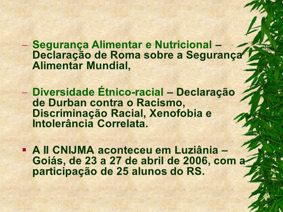 Segurança Alimentar e Nutricional – Declaração de Roma sobre a Segurança Alimentar Mundial, Diversidade Étnico-racial – Declaração de Durban contra o Racismo, Discriminação Racial, Xenofobia e Intolerância Correlata.