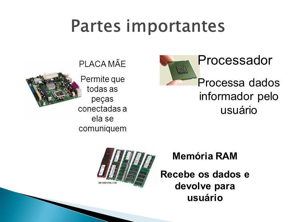 Partes importantes PLACA MÃE Permite que todas as peças conectadas a ela se comuniquem Processador Processa dados informador pelo usuário Memória RAM Recebe os dados e devolve para usuário