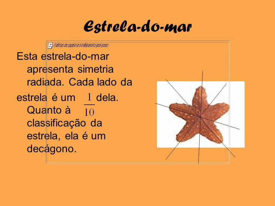Estrela-do-mar Esta estrela-do-mar apresenta simetria radiada. Cada lado da estrela é um dela. Quanto à classificação da estrela, ela é um decágono.