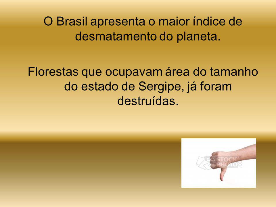O desmatamento é diretamente causado pela ação do homem sobre a natureza, principalmente devido à destruição de florestas para construir cidades: préd